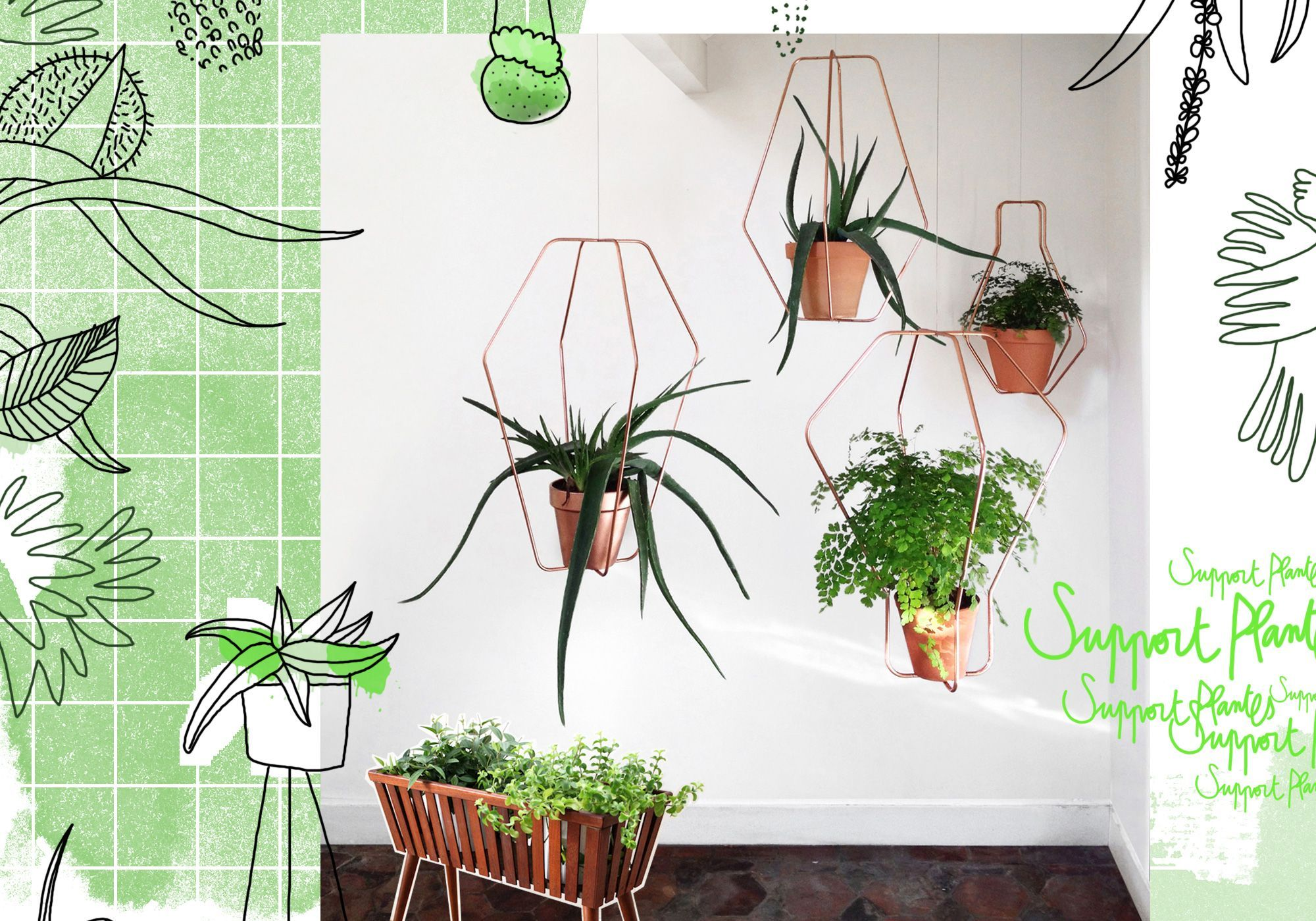 Tendance les plantes prennent de la hauteur elle d coration - Plante de salon ...