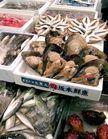 Un marché aux poissons ad hoc