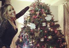 Les plus beaux sapins de Noël des stars