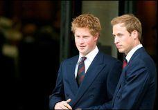 William et Harry, jamais sans mon frère