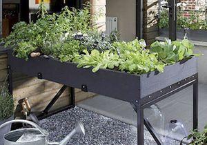 Cultiver un potager sur mon balcon, c'est facile.