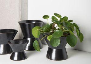 Joli cache-pot cherche belle plante !