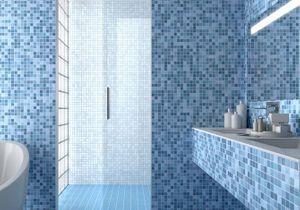 L'actu du jour : la première porte à galandage pour la douche