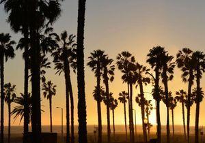 Nos meilleures adresses déco à Los Angeles