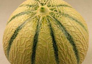 Bien choisir son melon