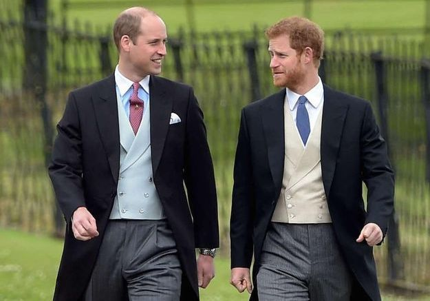 Les princes William et Harry : des mots tendres pour leur mère, la princesse Diana