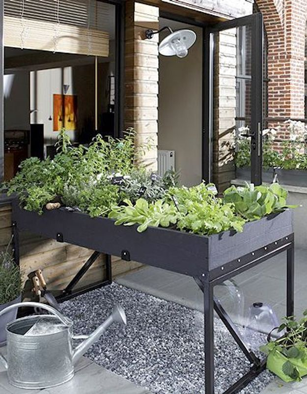 cultiver un potager sur mon balcon c est facile elle. Black Bedroom Furniture Sets. Home Design Ideas