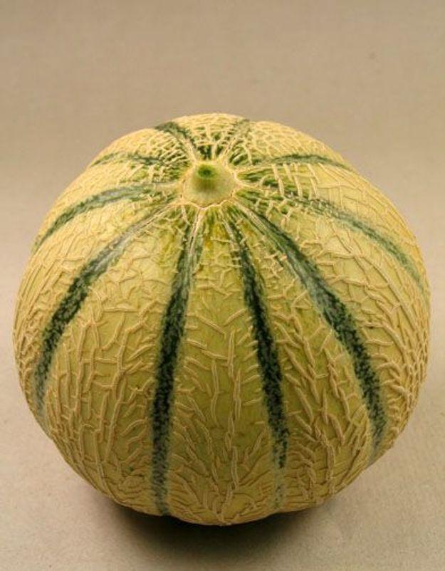 Bien choisir son melon elle table - Comment faire murir un melon ...