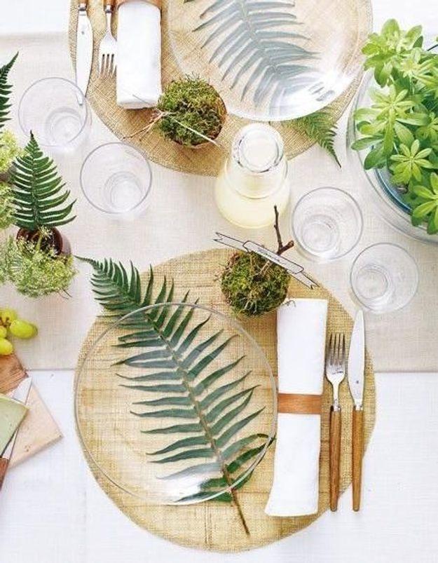 Découvrez quelle plante est un formidable coupe-faim