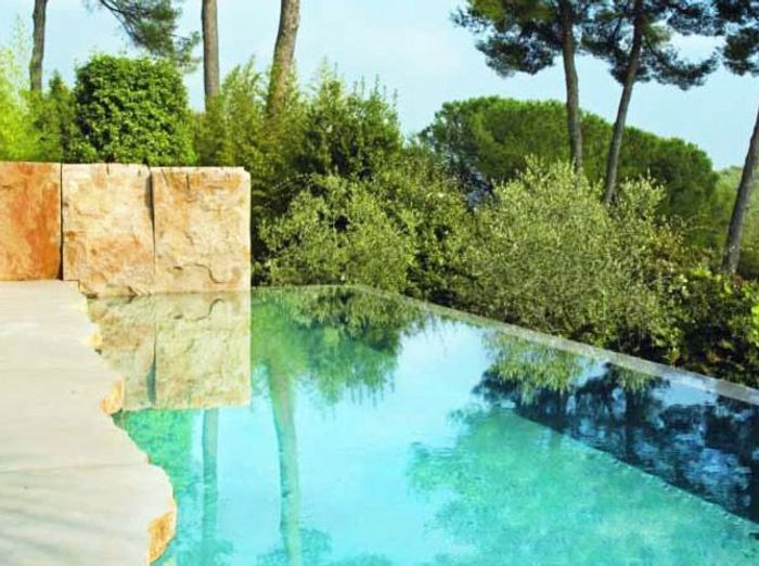 Les piscines naturelles retour aux sources elle d coration for Piscine naturelle a debordement