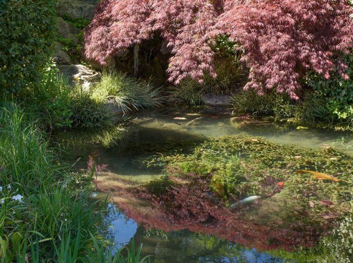 Des jardins zen qui devraient vous inspirer elle d coration - Jardin exterieur zen ...