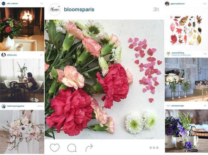 Les Instagram de la semaine : des intérieurs fleuris