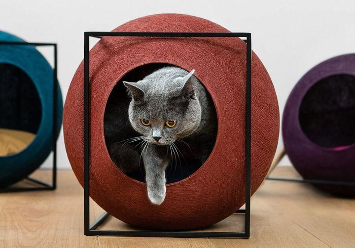 Des accessoires déco et design pour vos chiens et chats