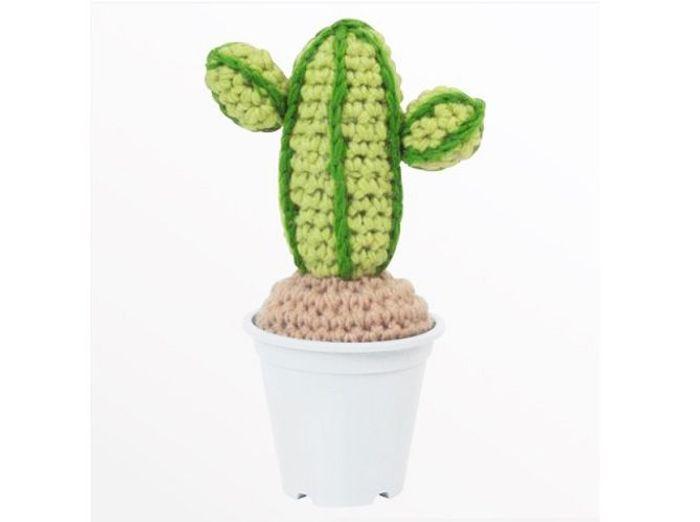 Cactus deco tricot bird