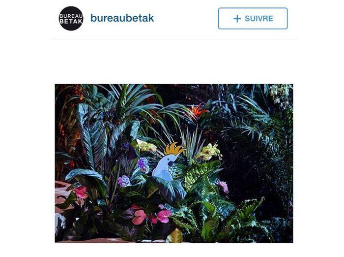 @bureaubetak