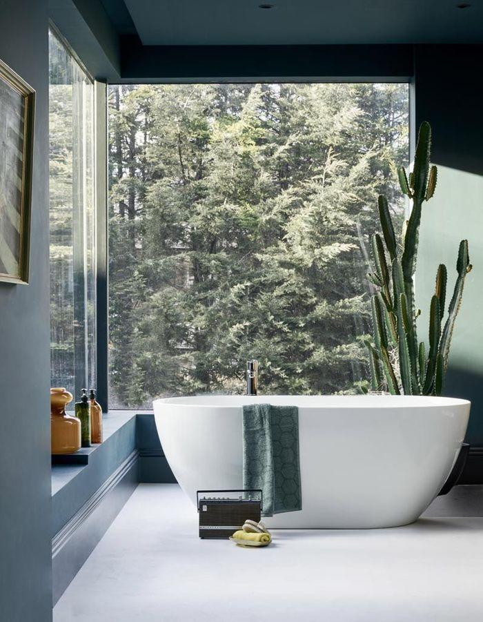 Un cactus XXL dans la salle de bains