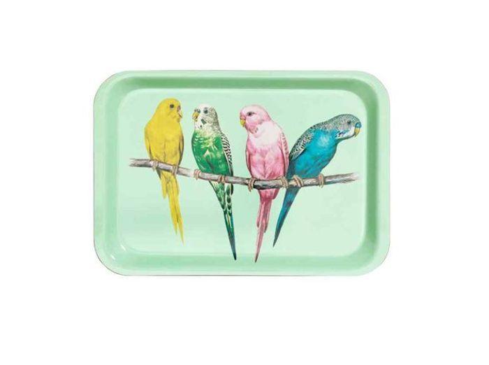 Un joli plateau avec perroquets pastel