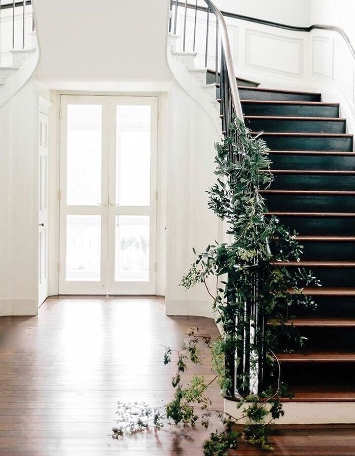 Végétaliser la rampe via une plante grimpante pour un escalier déco