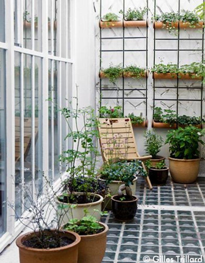Un loft sur cour elle d coration for Espace chlorophylle