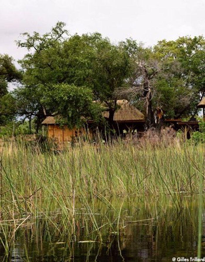Salle De Bain Esprit Chalet : Un thé au Botswana – Elle Décoration