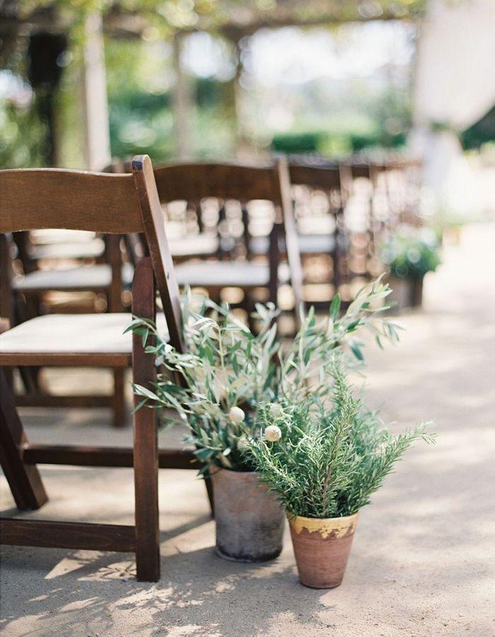 Sortez les plantes en pot dont vous disposez chez vous pour végétaliser la cérémonie de mariage