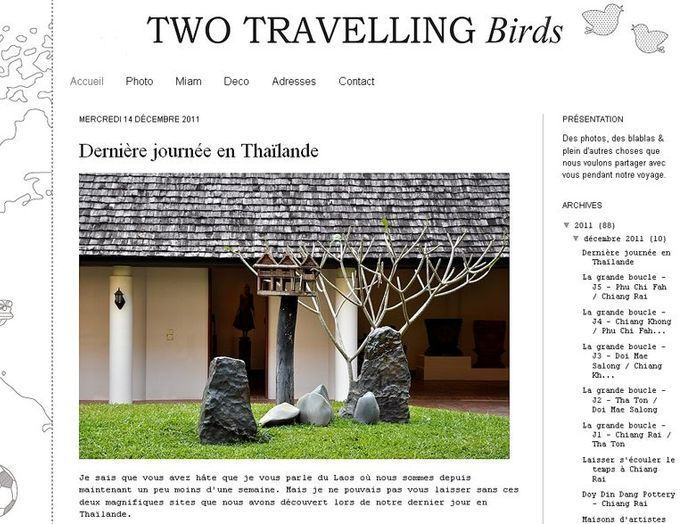 Two travelling birds