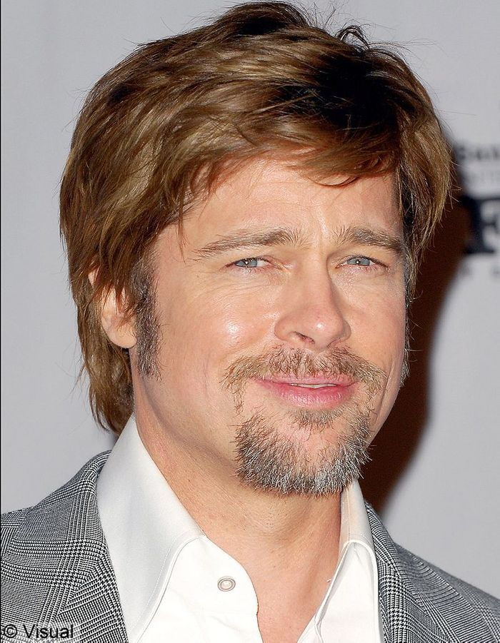 2008   une touffe fa u00e7on toupet et une barbe grisonnante