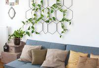et si les plantes avaient une influence sur notre bien. Black Bedroom Furniture Sets. Home Design Ideas