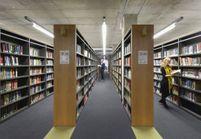 Une bibliothèque féministe, menacée de disparaître à Paris