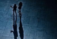 Femmes et djihad : non, la violence n'est pas l'apanage des hommes