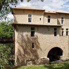 Circuit d'oenotourisme en Occitanie : pour les truffes addicts
