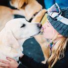 L'option... vacances au ski avec un chien
