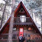 The Little Owl Cabin at Mt. Rainier, Packwood, Washington, US